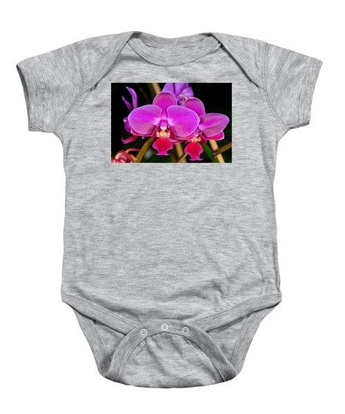 Orchid 422 Baby Onesie