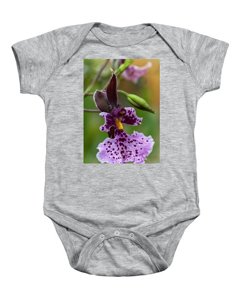 Baby Onesie featuring the photograph Orchid - Caucaea Rhodosticta by Heiko Koehrer-Wagner