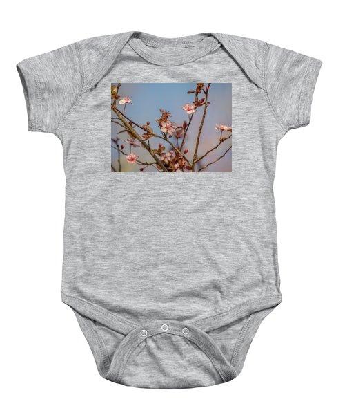 Purple Leaf Sandcherry Blossoms Baby Onesie