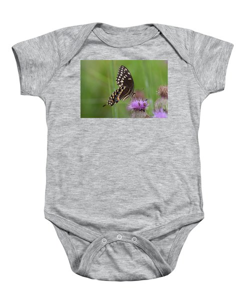 Palamedes Swallowtail And Friends Baby Onesie