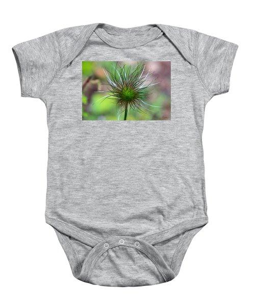 Pasque Fluff Baby Onesie