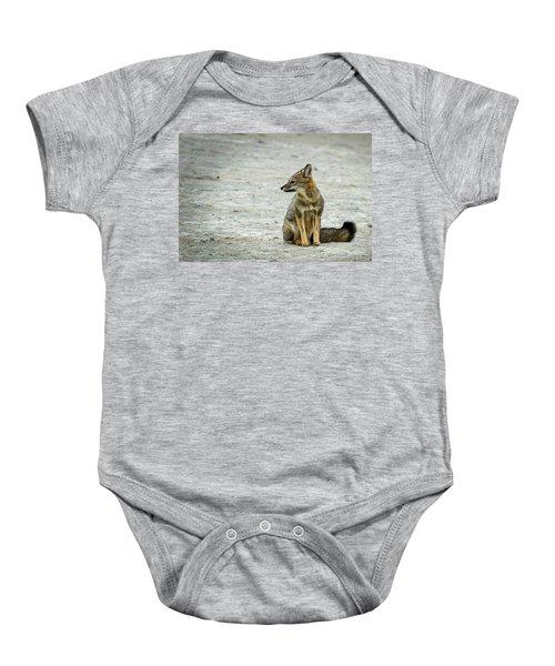 Patagonia Fox - Argentina Baby Onesie