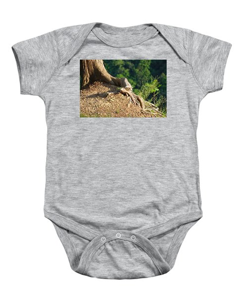 Picture Of A Tree On A Ledge Baby Onesie