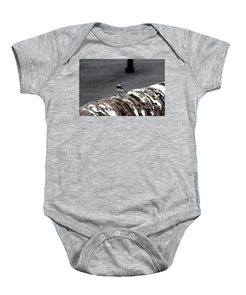 Pied Wagtail Baby Onesie