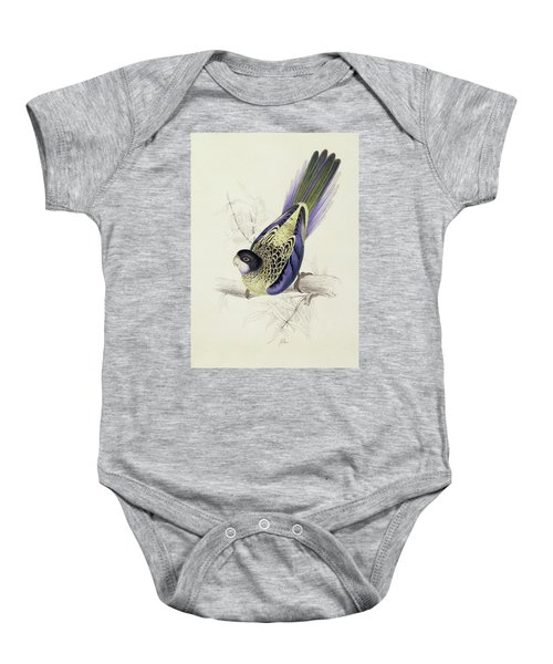 Platycercus Brownii, Or Browns Parakeet Baby Onesie by Edward Lear