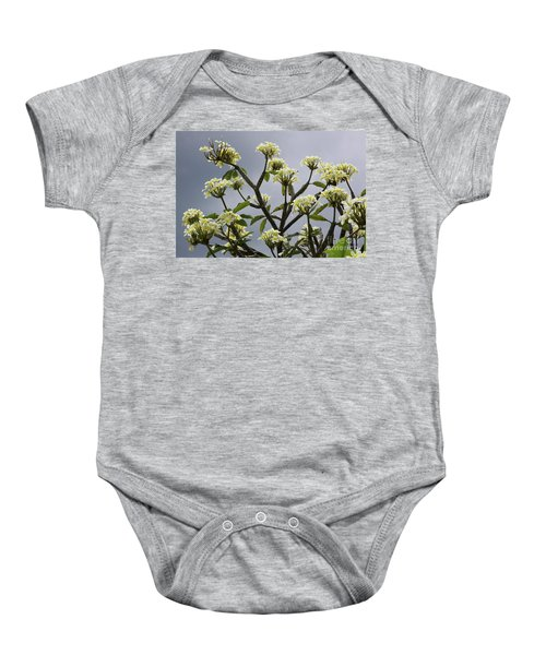 Plumeria Baby Onesie