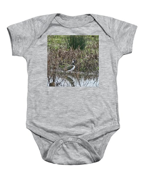 Portrait Of Beautiful Lapwing Bird Seen Through Reeds On Side Of Baby Onesie by Matthew Gibson