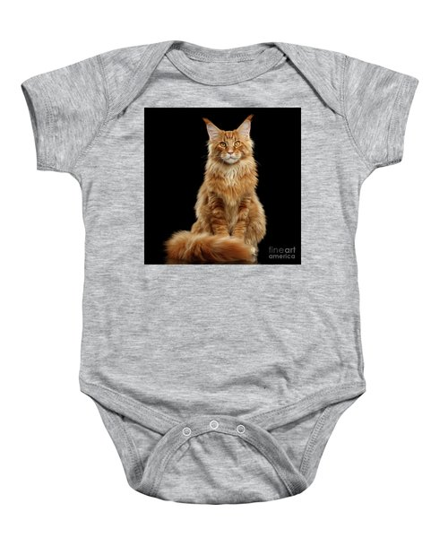 Portrait Of Ginger Maine Coon Cat Isolated On Black Background Baby Onesie