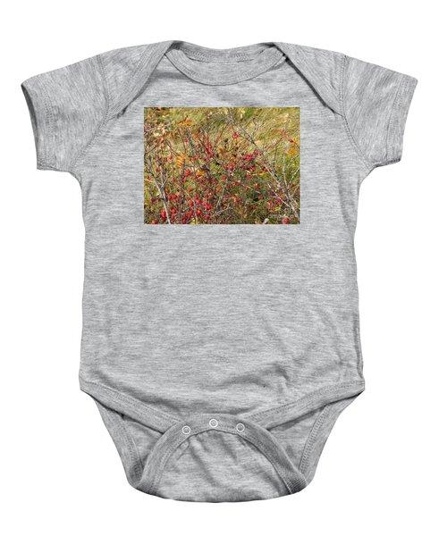 Prairie Rosehips Baby Onesie