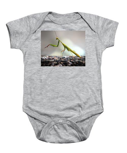 Praying Mantis  Baby Onesie