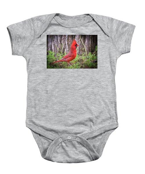 Proud Cardinal Baby Onesie