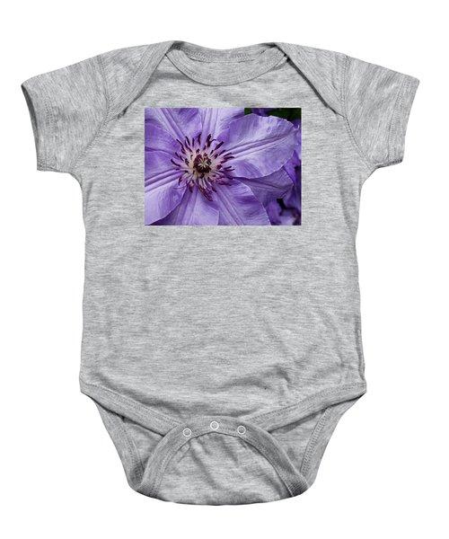 Purple Clematis Blossom Baby Onesie