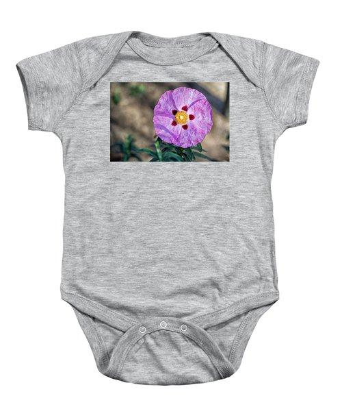 Purple Rockrose Baby Onesie