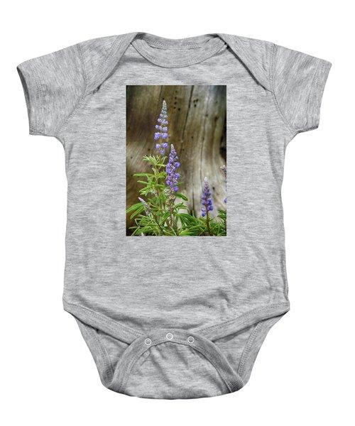Purple Lupine Baby Onesie