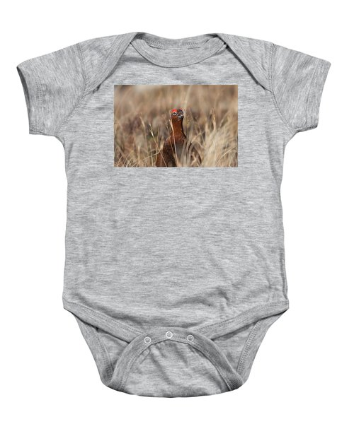 Red Grouse Calling Baby Onesie