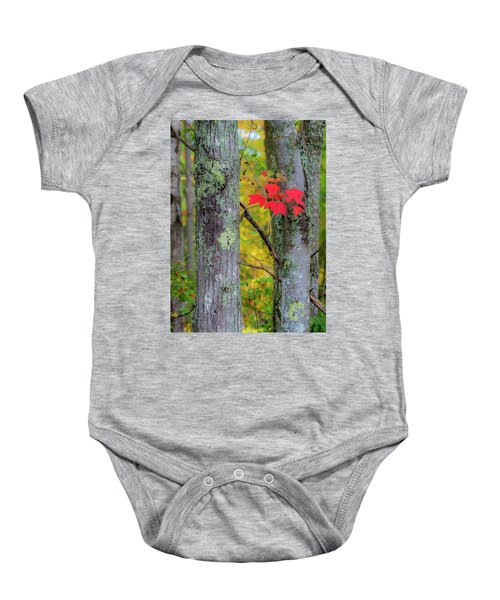 Red Leaves Baby Onesie