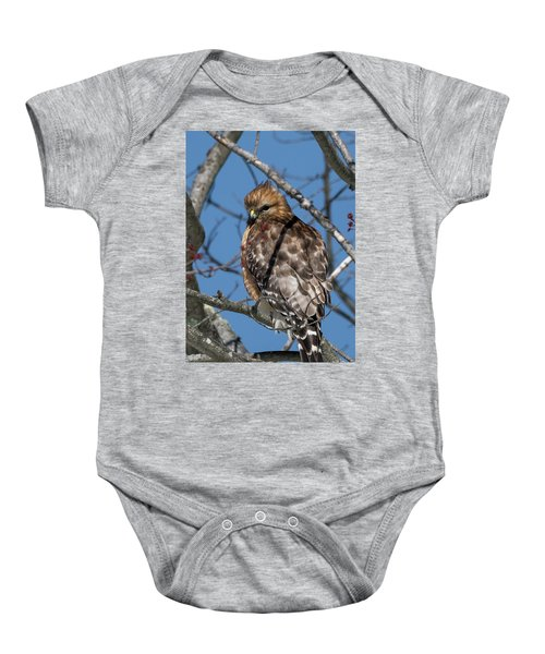 Baby Onesie featuring the photograph Red Shouldered Hawk 2017 by Bill Wakeley