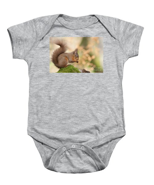 A Moment Of Meditation - Red Squirrel #27 Baby Onesie