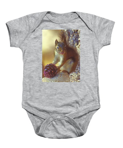 Red Squirrel With Pine Cone Baby Onesie