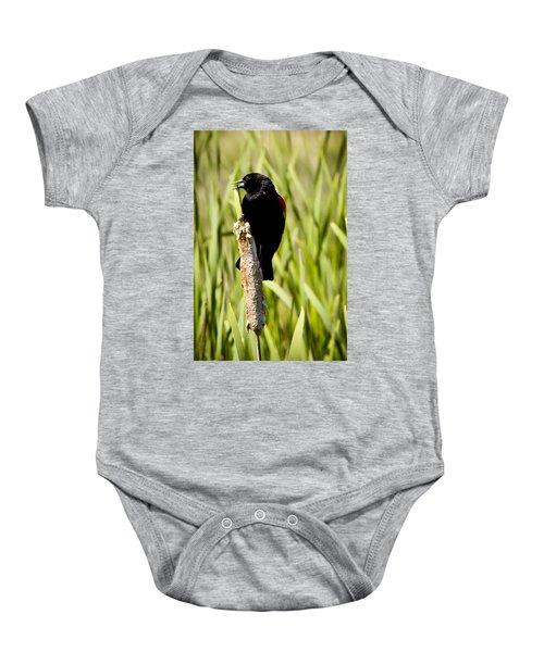 Red-winged Blackbird Baby Onesie