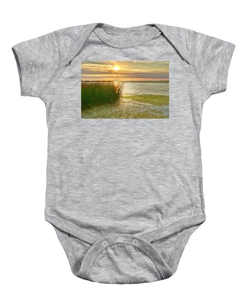 Reeds In The Sunset Baby Onesie