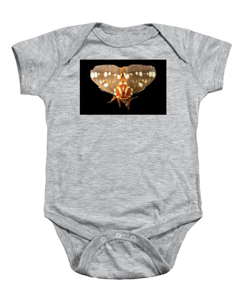 Royal Walnut Moth On Black Baby Onesie