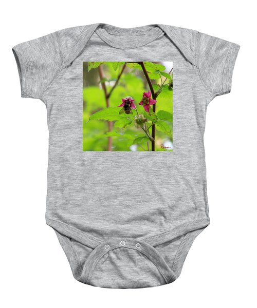 Salmonberry Honey Baby Onesie