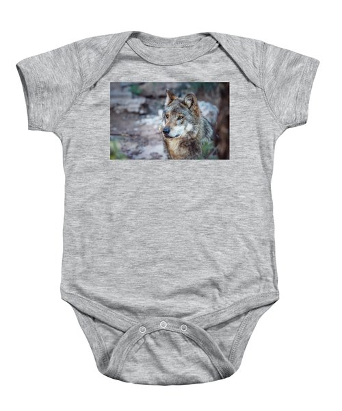Sancho Searching The Area Baby Onesie