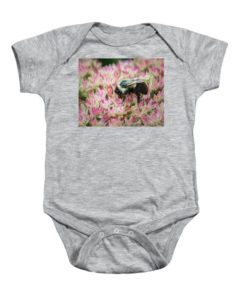 Baby Onesie featuring the photograph Sedum Bumbler by Bill Pevlor