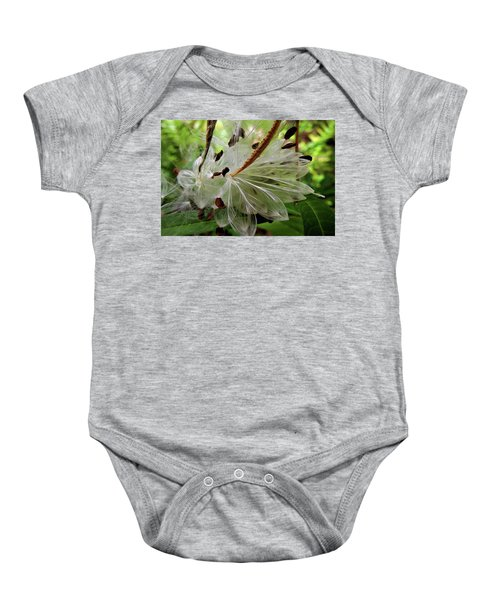 Seed Pods Baby Onesie