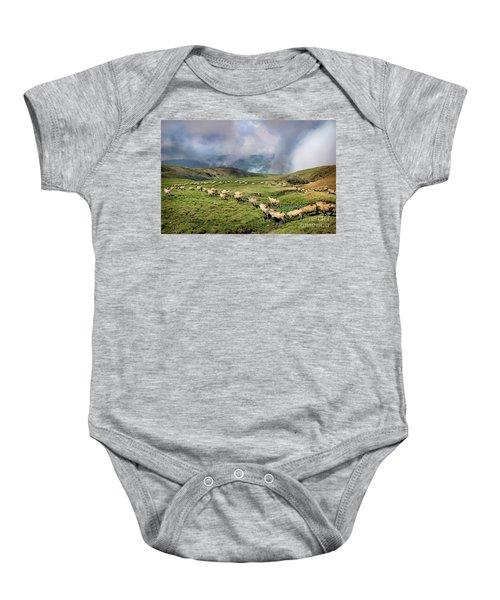 Sheep In Carphatian Mountains Baby Onesie