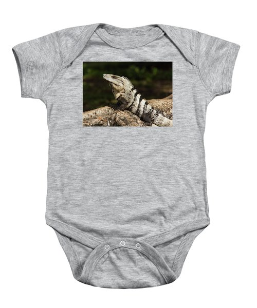 Sir Iguana Mexican Art By Kaylyn Franks Baby Onesie