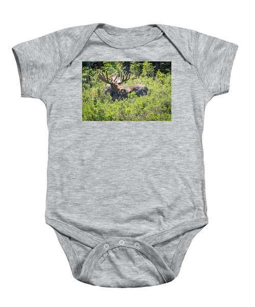 Smiling Bull Moose Baby Onesie