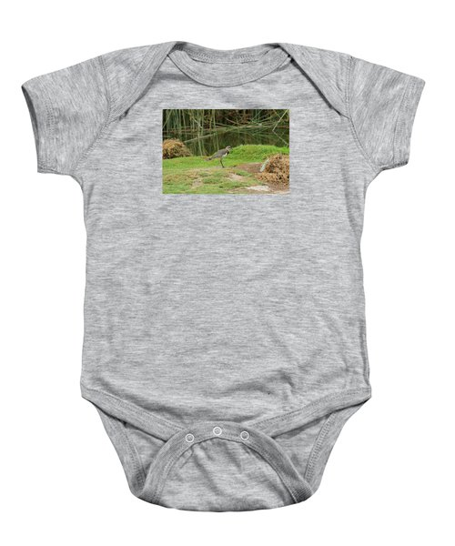 Southern Lapwing On Shore Baby Onesie by Robert Hamm