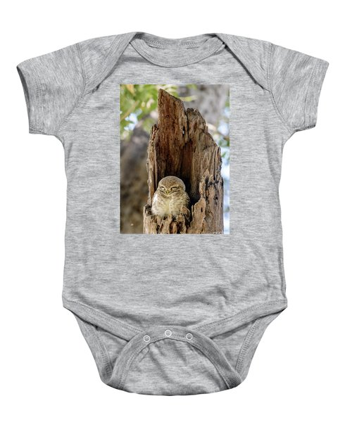 Spotted Owlet Baby Onesie