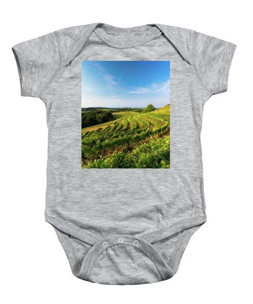 Spring Vinyard Baby Onesie