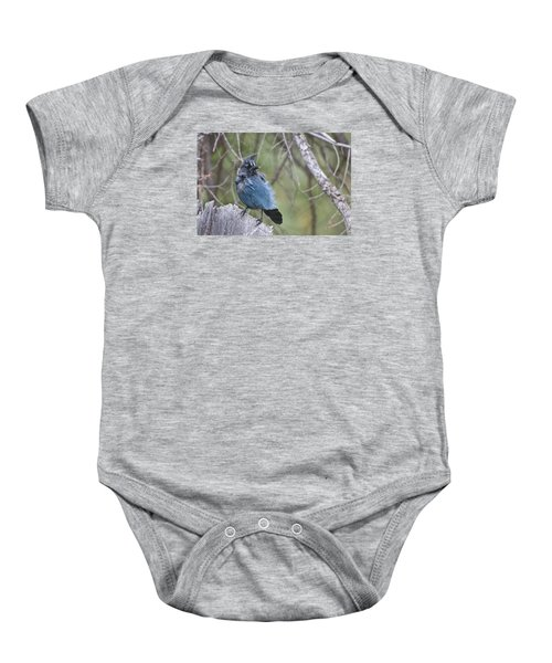 Baby Onesie featuring the photograph Stellar's Jay by Gary Lengyel