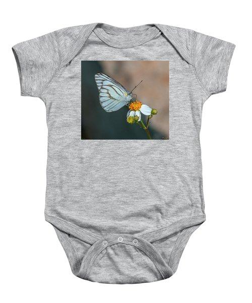 Striped Albatross Butterfly Dthn0209 Baby Onesie