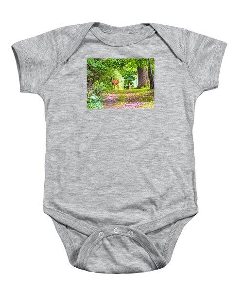 Summer Stroll Baby Onesie