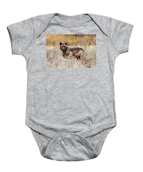 Teton Wolf Baby Onesie
