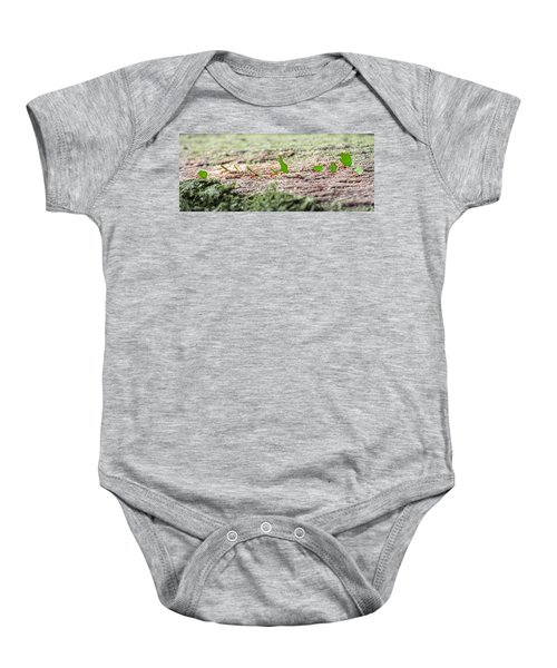The Leaf Parade  Baby Onesie by Betsy Knapp