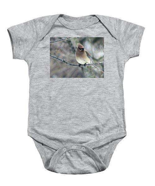 The Masked Cedar Waxwing Baby Onesie