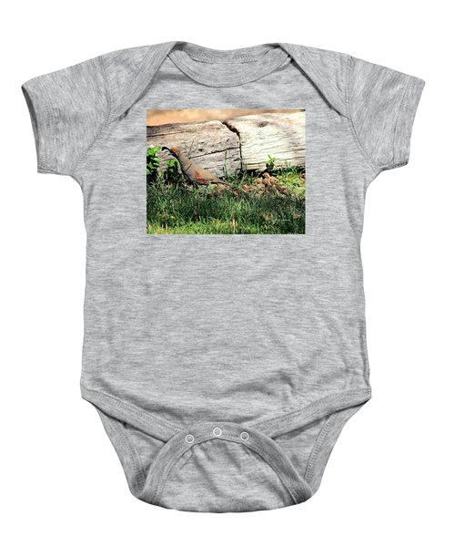 The Quail Family Baby Onesie