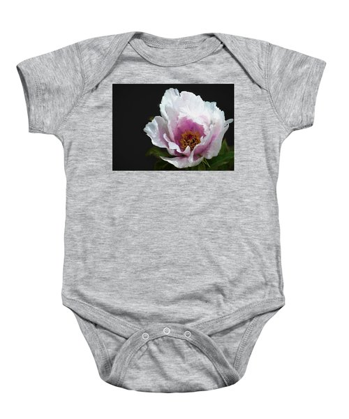 Baby Onesie featuring the digital art Tree Paeony I by Charmaine Zoe