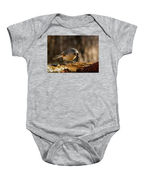 Tufted Titmouse In Fall Baby Onesie