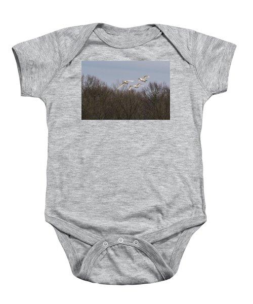 Tundra Swan Trio Baby Onesie