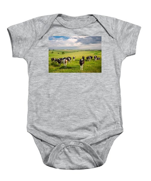 Valley Of The Cows Baby Onesie