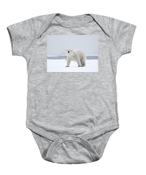 Watchful In The Arctic Baby Onesie