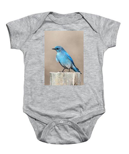 Mountain  Bluebird Baby Onesie