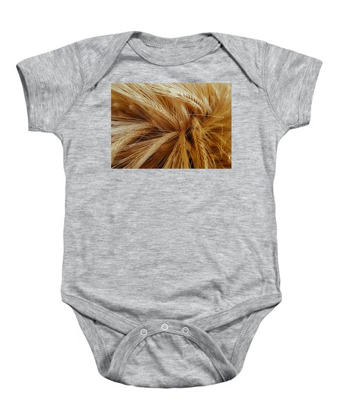 Wheat In The Sunset Baby Onesie